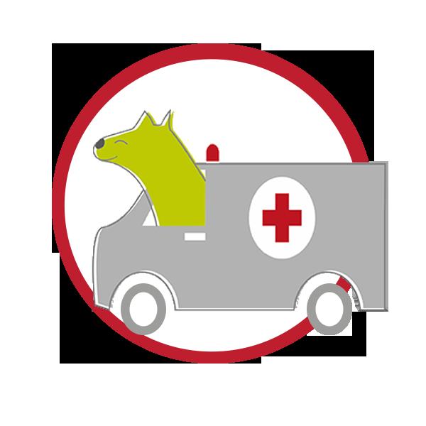 teva mobile clinic