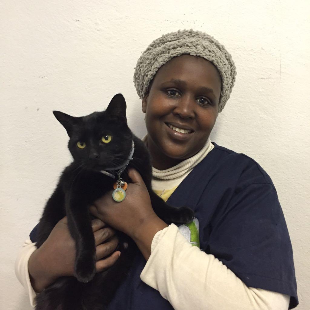 Mavis Teva Veterinary Clinic